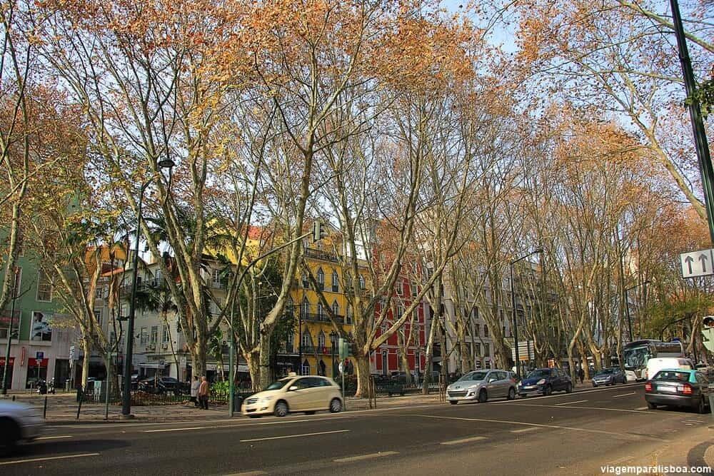 Bairros de Lisboa Avenida Liberdade